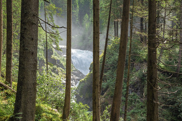 Tuinposter Bos rivier View of the Krimml Waterfalls from the forest opposite to the Jagasprung on the path to the upper part of the waterfall