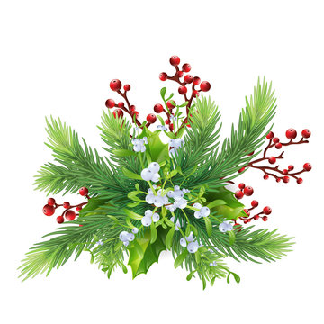 decor : fir branches, mistletoe, holly, red berries and a bow. Xmas or New Year elements for design.Isolated with shadow