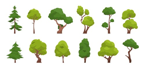 Cartoon tree. Simple flat forest flora, coniferous and deciduous meadow trees, oak pine Christmas tree isolated plants. Vector set illustration agricultural garden and nature park plant Papier Peint