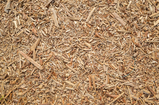 wooden and lumber sawdust