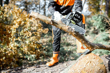 Lumberman in protective workwear sawing with a chainsaw branches from a tree trunk in the forest, close-up with no face