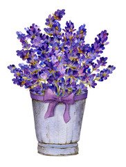 Rich bouquet of lavender in the basket with a bow hand drawn in watercolor isolated on a white background. Provence watercolor illustration. Ideal for creating invitations, greeting cards.