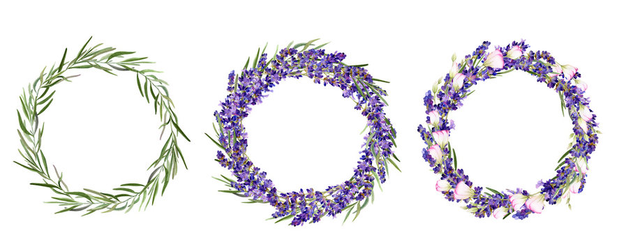 Set of hand drawn watercolor wreaths with lavender flowers, leaves and bluebells isolated on a white background. Ideal for creating  invitations, greeting cards.Floral illustration.Botanic composition