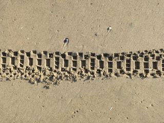 track of a mountain bike on the beach of Zandvoort (2)