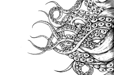 Tentacle hand draw on white background