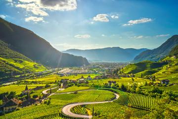 Fotobehang Wijngaard Vineyards view in Santa Maddalena Bolzano. Trentino Alto Adige Sud Tyrol, Italy.
