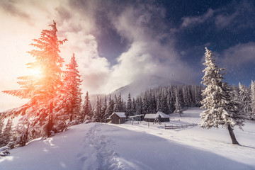 Magical landscape of mountains in winter. Fantastic morning glowing by sunlight. View of snow-covered forest trees. Background of falling snowflakes. Photo greeting card.