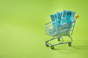 Miniature shopping trolley with Brazilian money. The concept of shopping and the power of the economy. Place for text