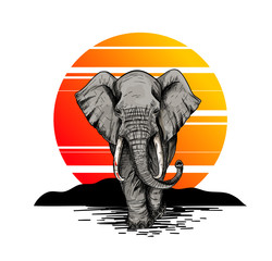 Bic elephant, front view, sunset on the background