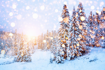 Winter scenic landscape with colorful snowflakes