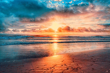 Garden Poster Sea sunset Atlantic Ocean, Shoreline, Florida, Coastline, Daytona Beach, beach, sun, sunrise, waves, tides,