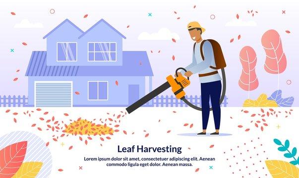 Leaf Removal Service Flat Vector Promotion Banner
