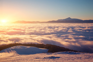 Wall Mural - Incredible air view of the valley with dense fog. Location Carpathian mountain, Ukraine, Europe.
