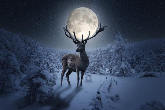Großer märchenhafter Hirsch steht in einer Winterlandschaft. Das Geweih hält einen großen Vollmond in einer Sternen Nacht