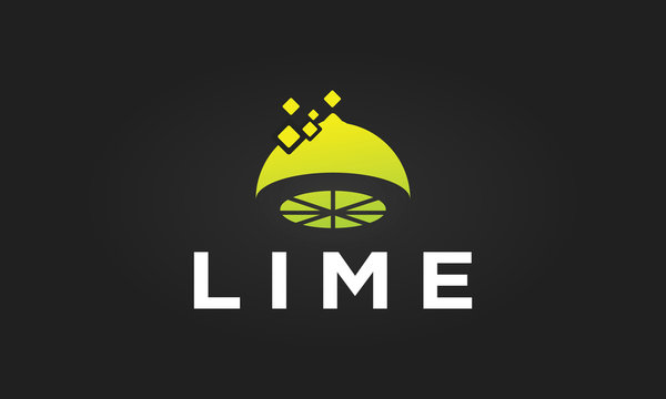 Lime vector logo design inspirations