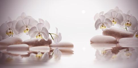 Foto op Plexiglas Orchidee spa de piedras sobre agua y flores orquídeas