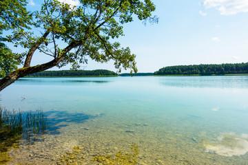 Jezioro lazurowe las turkusowe drzewa plaża wdzydze