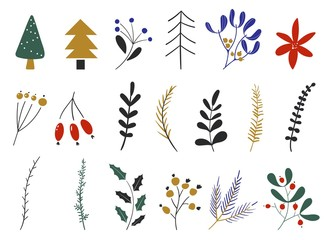 Vector set of flowers and leaves, christmas plants. Hand drawn design elements. New year collection with seasonal elements. Winter icons.