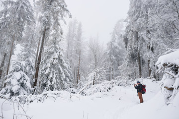 Fototapete - Young man taking pictures of a snow covered forest