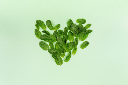Heart made of mint leaves on the trendy solid green backdrop, ecology concept, flat lay style