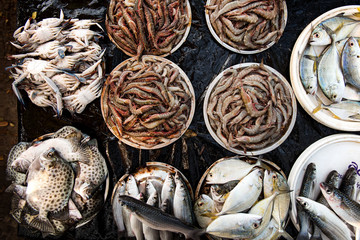 Fresh fish in market in Kerala, India on January 24, 2016