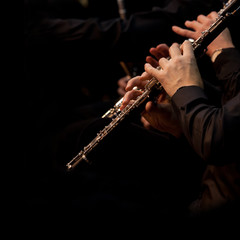 Fototapete - Hands of an oboe musician in an orchestra