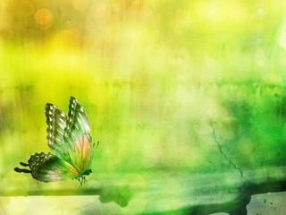 Natural background with butterly. Watercolor