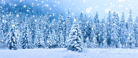 Christmas holiday background. Winter scene. Snowfall in winter forest Fototapete