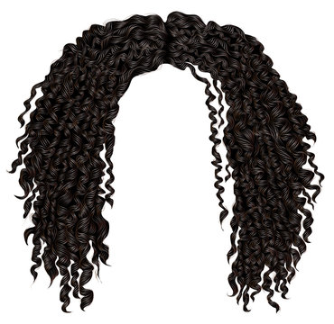 trendy curly disheveled african black  hair  . realistic  3d . fashion beauty style .unisex women  men.afro