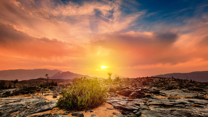 Wall Murals Coral Sunset on Jebel Shams in Oman