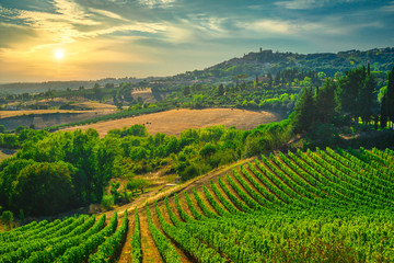 Papiers peints Vignoble Casale Marittimo village, vineyards and landscape in Maremma. Tuscany, Italy.