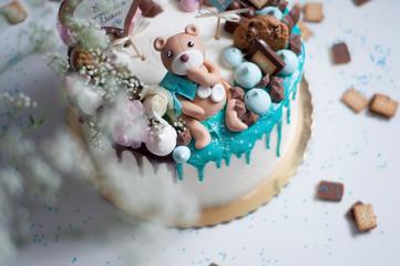 Obraz Misiowy tort - fototapety do salonu