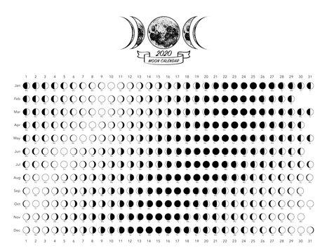 2020 moon phases calendar white astronomy vector chart