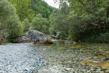 Foto op Aluminium Bos rivier Creek flowing between stones and trees. The stream is located on Mount Olympus on the way to the Holy Cave.