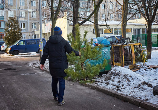 man throws a Christmas tree in the trash after the holidays