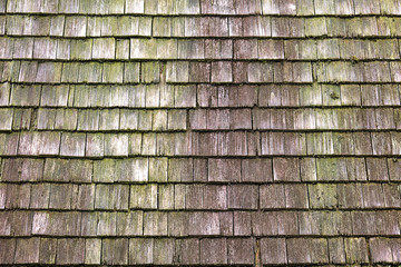 Background from a weathered and mossy wall of wooden shingles
