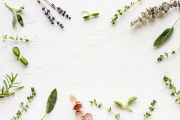 Apothecary of natural wellness and self-care. Herbs and medicine on white background top view frame copy space Fotomurales