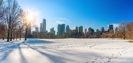 Wall Mural - Central park at sunny winter day, New York City, USA