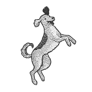 Happy jumping dancing dog pet sketch engraving vector illustration. T-shirt apparel print design. Scratch board style imitation. Black and white hand drawn image.