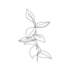 Continuous One Line Drawing. One Line Flowers Abstract Illustration. Simple One Line Plant Drawing. Botanical Nordic Sketch. Vector EPS 10.