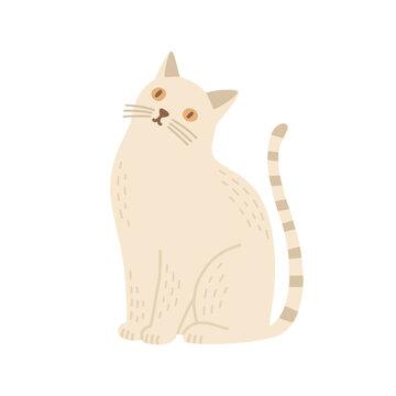 Domestic cat flat vector illustration