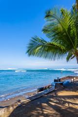 tropical beach with palm trees, l Étang-Salé-les-Bains, Réunion