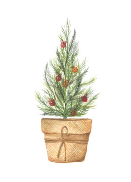 Christmas tree with christmas balls in brown pot. Watercolor hand draw illustration isolated on white background. Merry Christmas and Happy New Year.