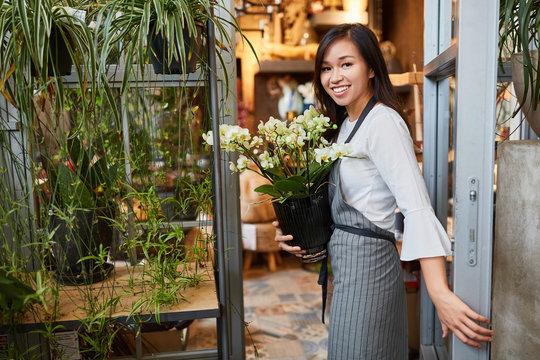 Junge Floristin trägt Zimmerpflanze für die Lieferung