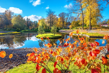 Foto op Plexiglas Cappuccino Park Kadriorg with small pond at golden autumn. Tallinn, Estonia