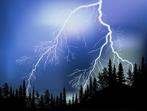 bright lightning above black forest