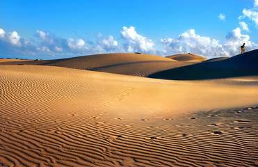 National park of Maspalomas sand dunes. Gran Canaria, Canary islands, Spain
