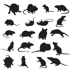 set of mouse animal.mouse silhouettes set isolated on white background vector. mouse and rad with different poses