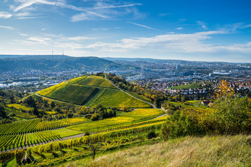 Germany, Stuttgart houses surrounded by colorful vineyards and forested hills in autumn