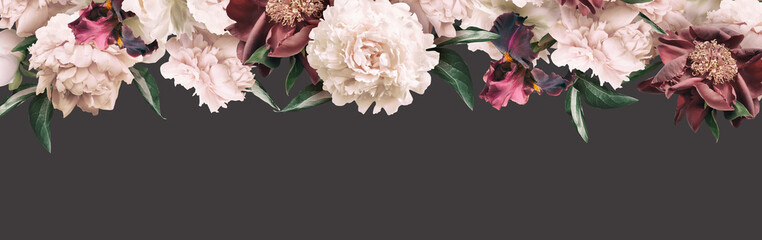 Cream peonies and maroon iris isolated on dark background. Floral banner, cover header with copy space. Natural flowers wallpaper or greeting card.